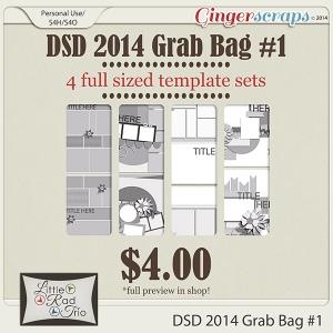 LRT_2014DSDgrabbag1preview