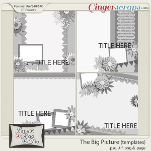 LRT_bigpicture_preview-01